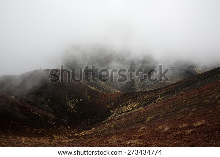 Scenery and lava fields of Mt. Etna volcano, Sicily, engulfed in thick clouds and fog, with sporadic yellow grasses growing on black volcanic (igneous) rock.  - stock photo