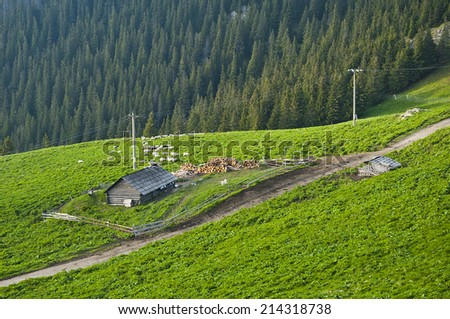 scenery of a sheepfold close to the forest, a beautiful landscape and a path to the sheepfold, landscape image