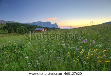 Scenery of Dolomiti mountains at sunset with rugged Schlern peaks in background, farm houses on green hills under golden sunlight & grassy fields of wild flowers in Alpe di Siusi, South Tyrol, Italy - stock photo