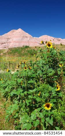 Scenery of the Conata Basin in Badlands National Park - South Dakota - stock photo