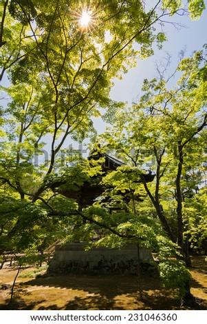 scenery of  the gazebo in Japanese garden, Kyoto, Japan - stock photo