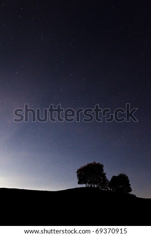 scenery of two trees outlined against starred sky - stock photo