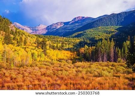 Scenic Aspen Lanscape. Colorado Rocky Mountains. Aspen, Colorado, United States. - stock photo