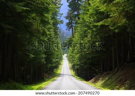 Scenic Byway in Mount Rainier national park - stock photo