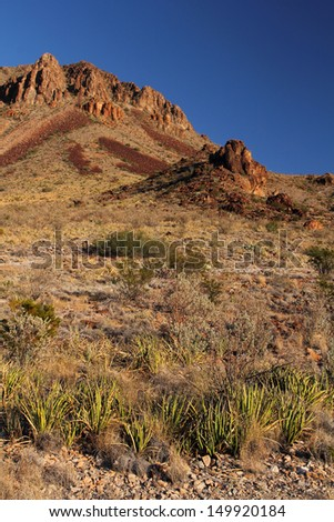 Scenic Desert Landscape in Big Bend National Park, Texas - stock photo