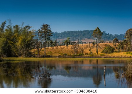 Scenic double tree with moutains in morning sunrise at lake in Thailand - stock photo