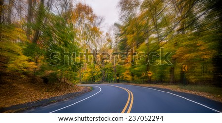 Scenic drive through the forest. Speeding. POV shot - stock photo