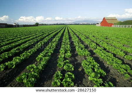 Scenic Farm With Red Barn - stock photo