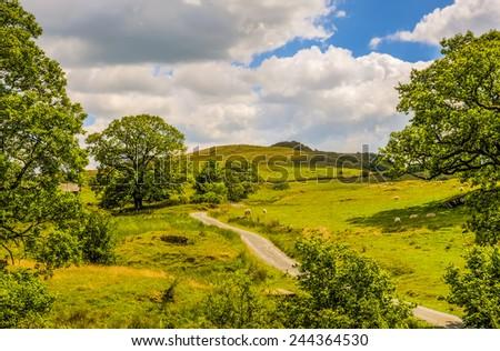 Scenic green countryside landscape - stock photo