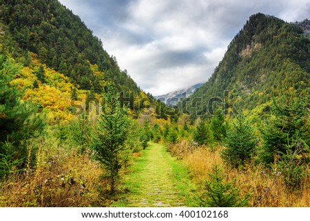 Scenic green walkway among woods in mountain gorge at Jiuzhai Valley National Park. Forest in the Min Mountains (Minshan), the Tibetan Plateau, Jiuzhaigou nature reserve, China. Autumn landscape. - stock photo