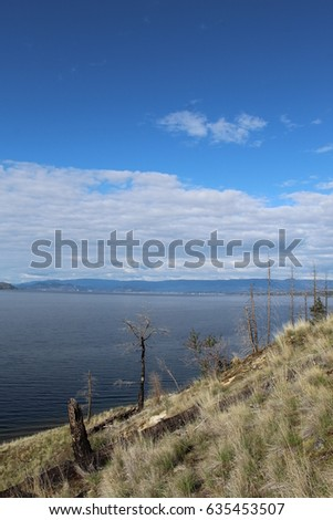 Scenic lake with burned standing trees on hillside in foreground. Mountains, lake and blue sky white clouds background.