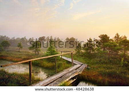 Scenic landscape in the morning - stock photo