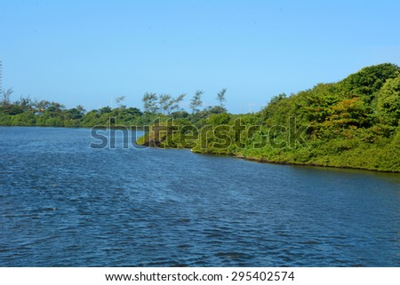 Scenic landscape of the Amazon jungle in Brazil. - stock photo