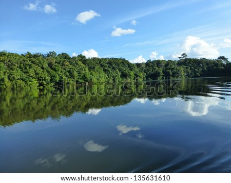 Scenic landscape, the Juma River about 120 km from Manaus, Amazonas Brazil - stock photo