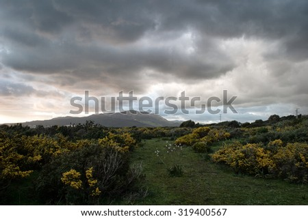 Scenic landscape with stormy grey clouds over mountains and a lush green garden with flowering shrubs