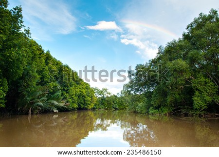 Scenic mangrove view of Kota Belud, Sabah,Malaysia. This amgrove area is famous among tourist for watching proboscis monkey and firefly at night. - stock photo