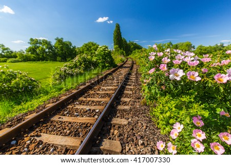Scenic railroad in remote rural area in summer