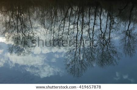 Scenic Reflection in the river