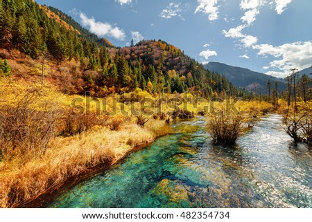 Scenic river with crystal clear water among fall forest and amazing wooded mountains at the Rize Valley in Jiuzhaigou nature reserve (Jiuzhai Valley National Park), China. Beautiful autumn landscape.