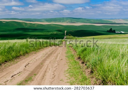 Scenic rural road through rolling hills and wheat fields, leads to the horizon in the Palouse area, eastern Washington, USA.