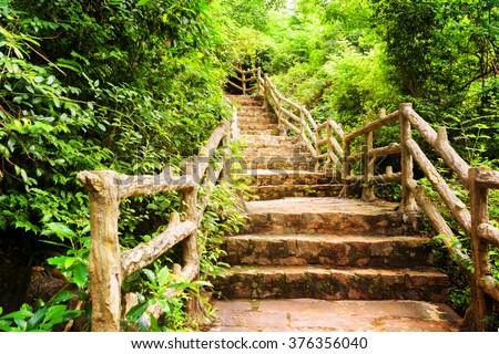 Scenic stone stairs among green foliage leading across beautiful tropical woods. Way through forest in summer season. - stock photo