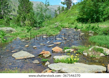 Scenic stream in the mountains - stock photo