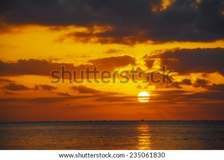 scenic sunset with seagulls over the sea. Shot in Alghero, Italy. - stock photo