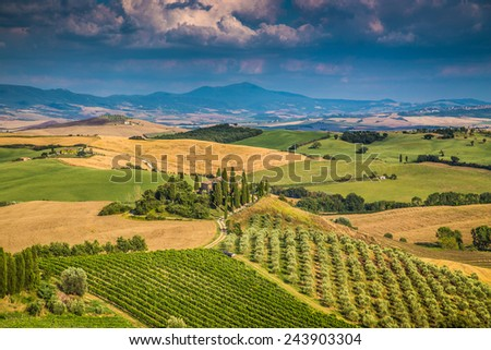 Scenic Tuscany landscape with rolling hills and valleys in golden evening light, Val d'Orcia, Italy - stock photo