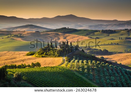 Scenic Tuscany landscape with rolling hills and valleys in golden morning light, Val d'Orcia, Italy - stock photo