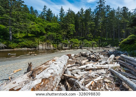 scenic view in Ruby beach on summer.Olympic national park,Washington,Usa. - stock photo