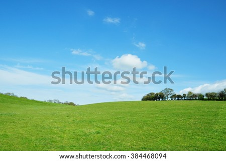 Scenic View of a Beautiful Green Field and Blue Sky Above - stock photo
