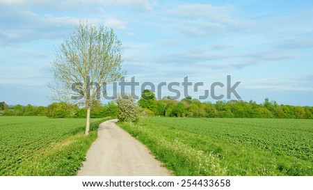 Scenic View of a Country Road through a Farmland Field in Rural England - stock photo