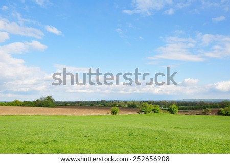Scenic View of a Green Farmland Field with a Beautiful Blue Sky above - stock photo