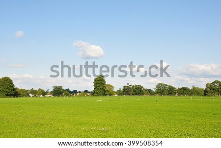 Scenic View of a Lush Green Field and Beautiful Blue Sky Above  - stock photo