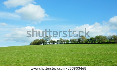 Scenic View of a Lush Green Field with a Beautiful Sky Above - stock photo