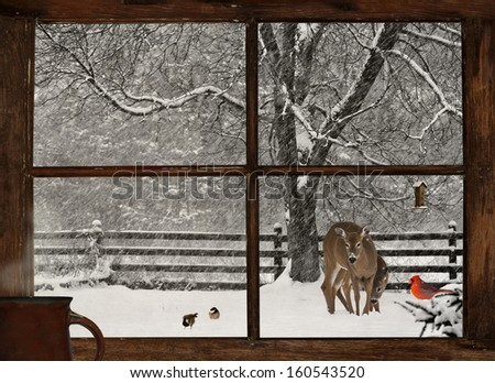 Scenic view of a mother, and baby deer, a bright red Cardinal, and two cute chickadees in a snowstorm, seen through a grunge farm house window with a cup of steaming coffee on the windowsill. - stock photo