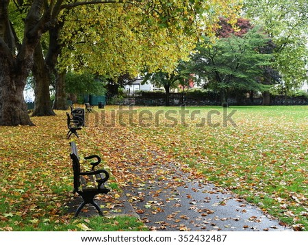 Scenic View of a Pathway through a Beautiful Leafy Public Park in Autumn