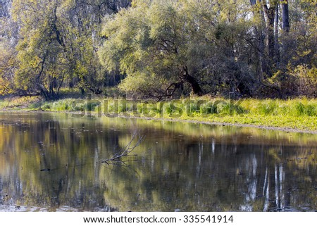 Scenic view of a river in autumn