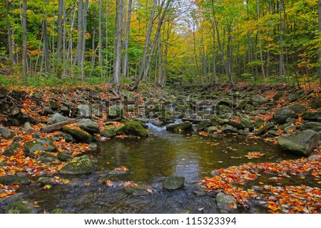 Scenic view of autumn forest and river - stock photo