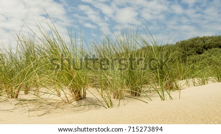 Scenic View Of Dune Against Sky