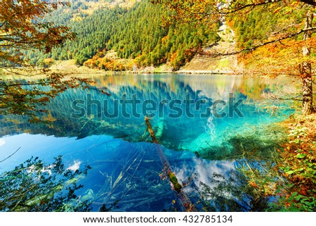 Scenic view of lake with azure water among colorful fall woods in the Shuzheng Valley, Jiuzhaigou nature reserve (Jiuzhai Valley National Park), China. Submerged tree trunks are visible in water. - stock photo