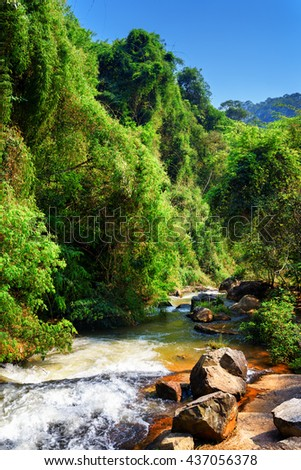 Scenic view of mountain river with crystal clear water among green woods in summer. Amazing sunny forest landscape in Vietnam. Blue sky in background. - stock photo