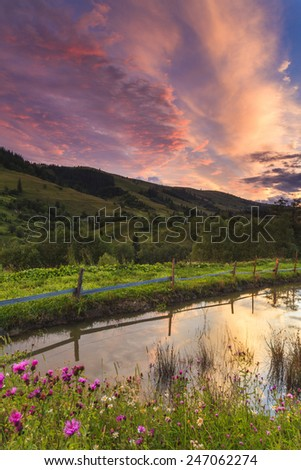 Scenic view of mountains with flowers in the foreground - stock photo