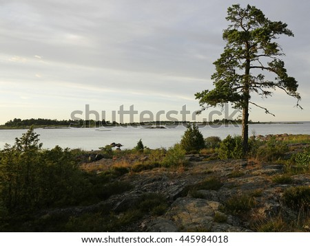 Scenic view of rocky east coast in sunset - stock photo