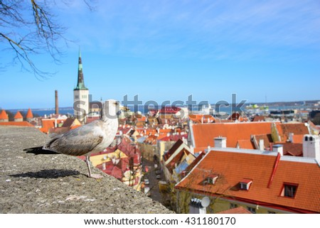 Scenic view of the old town city and sea port harbor in Tallinn, Estonia. Toompea hill with tower St. Olaf church and Russian Orthodox Alexander Nevsky Cathedral. - stock photo