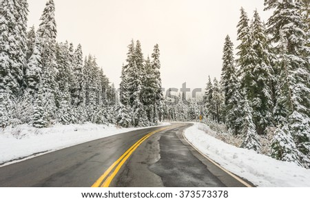 scenic view of the road in the  forest  with snow covered. - stock photo