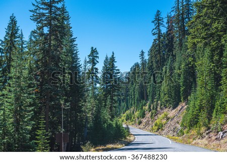 scenic view of the road with forest and  with mountain background.  - stock photo