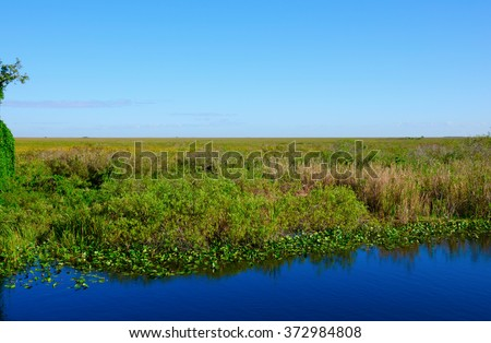 Scenic view of the world famous River of Grass in the Everglades National Park in South Florida showing water swamp land grasses stretching out as far as the eye can see - stock photo