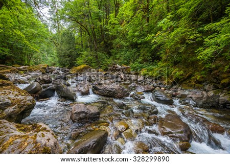 scenic view of water fall in mt Rainier national park area,Wa,Usa - stock photo