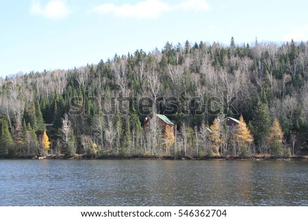 Scenic view of winter trees beside a lake